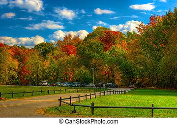 montaña, otoño, -, parque, pináculo