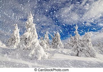 montaña, paisaje de invierno, bosque