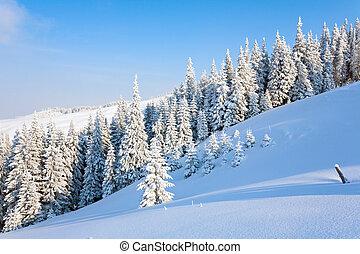 montaña, paisaje de invierno