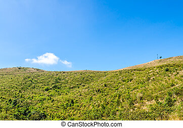 Montaña, paisaje