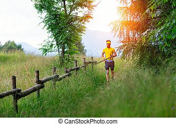 montaña, palos, mano, arrastre correr, hombre, pradera
