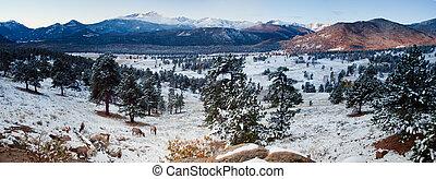 montaña, parque nacional, rocoso