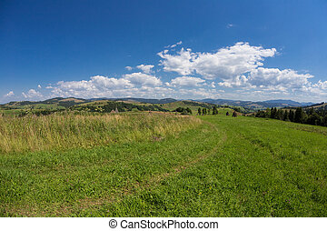 montaña, pasto o césped, colina, plano de fondo