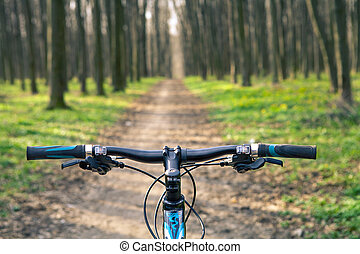 montaña, rápido, bicycle., abajo, descendente, colina,...