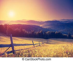 montaña, retro, paisaje