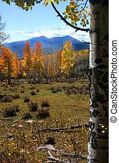 montaña rocosa, otoño