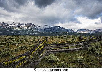 montaña, sawtooth, idaho, gama