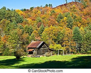 montaña, tronco casa, en, otoño