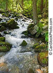 montaña, verano, bosque, fluir, paisaje de río