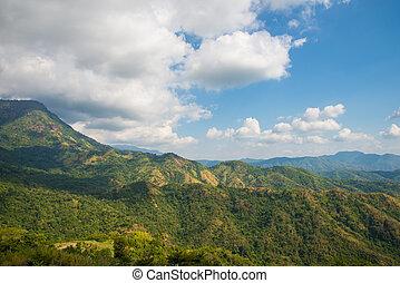 montaña, verde