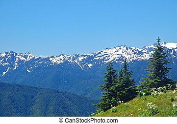 montaña, vistas