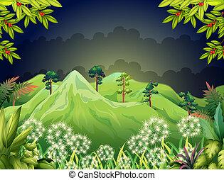 montañas altas, en, el, oscuridad, bosque