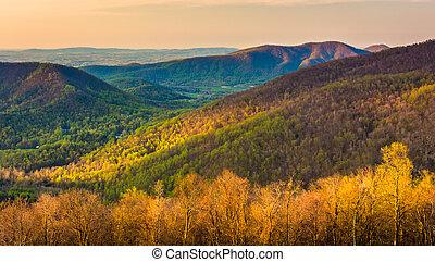montañas, appalachian, mañana, dri, contorno, temprano,...