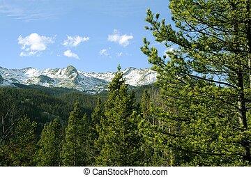 montañas, colorado, rocoso
