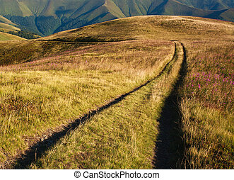 montañas, distante, camino