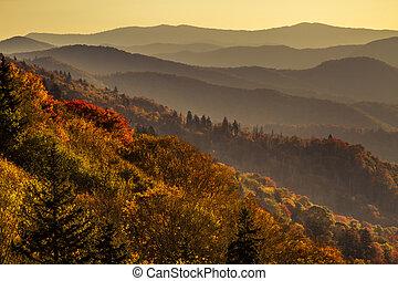 montañas, grande, ahumado, parque, otoño, nacional