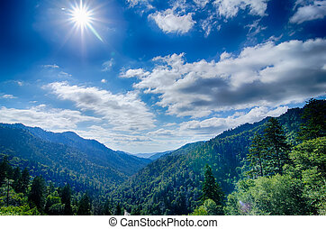 montañas, grande, norte, ahumado, parque, tennessee,...