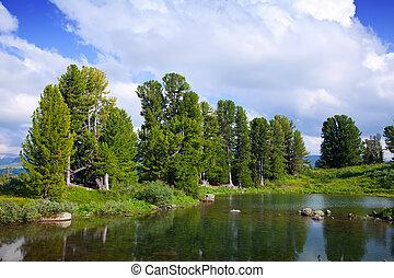 montañas, lago