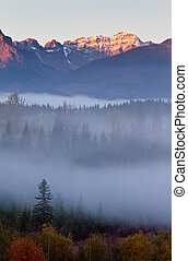 montañas, niebla