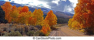 montañas, oriental, california, follaje, otoño, nevada de...