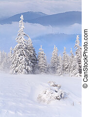 montañas, paisaje de invierno, brumoso