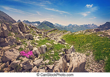 montañas, paisaje, en, vorarlberg