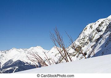 montañas, polyana, rusia, krasnaya