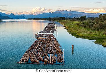 montañas, río, distante, troncos
