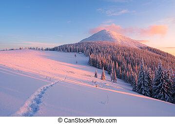 montañas, senda, paisaje de invierno, nieve
