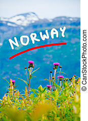 montañas, y, fiordo, en, noruega