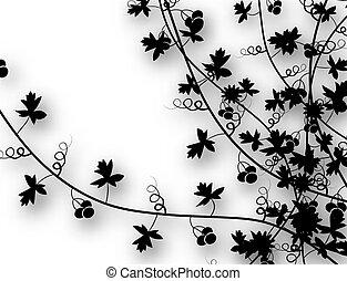 Enredaderas Ilustraciones De Arte Vectorial 51639