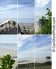 Montage of coastal scenery