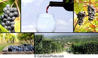 montage, terre, vin