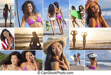 montage, van, actief, vrouwen zet op het strand, surfer meisjes