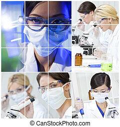 montage, wissenschaft, medizinische forschung, laboratorium, frauen