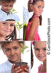 montagem, de, duas crianças, com, plantas