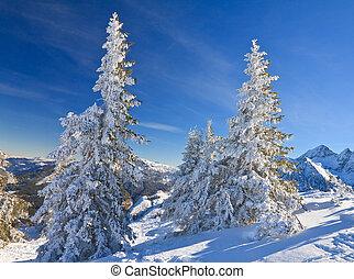 montagna, austria, paesaggio., schladming.