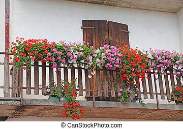 Montagna fiorito balcone gerani casa montagna estate