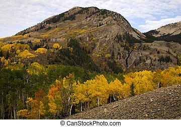 montagna, colorado, bute, crested, autunno, roccioso