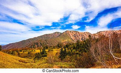 montagna, con, cielo blu, in, giappone, alpi