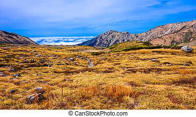 montagna, con, cielo blu, in, giappone, alpino, tracciato