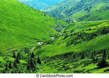montagna, fiume, tra, colline verdi