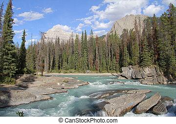 montagna, fiume, -, yoho parco nazionale
