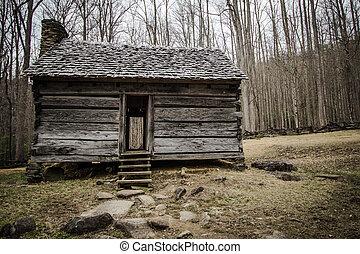 montagna, fumoso, cabina, pioniere