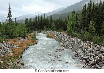 montagna, nazionale, parco,  Banff, Flusso