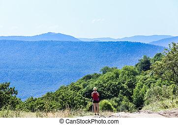montagna, nord, turista, range., caucasus, regione, strada, fondo, camminare, russia, krasnodar