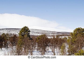 montagna, paesaggio inverno