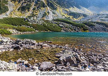 montagna, poland., laghi, 5, tatra, valle, lago, montagne