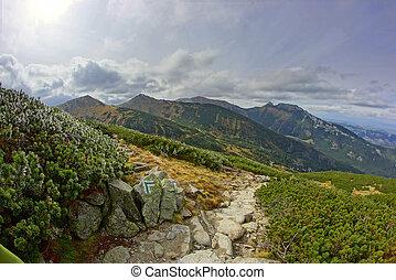 montagna, polonia, tatras, paesaggio