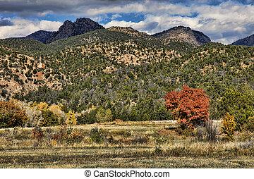 montagna, roccioso, colorito, foothills